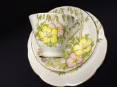 Roslyn China Azelea tea trio - DECO shape